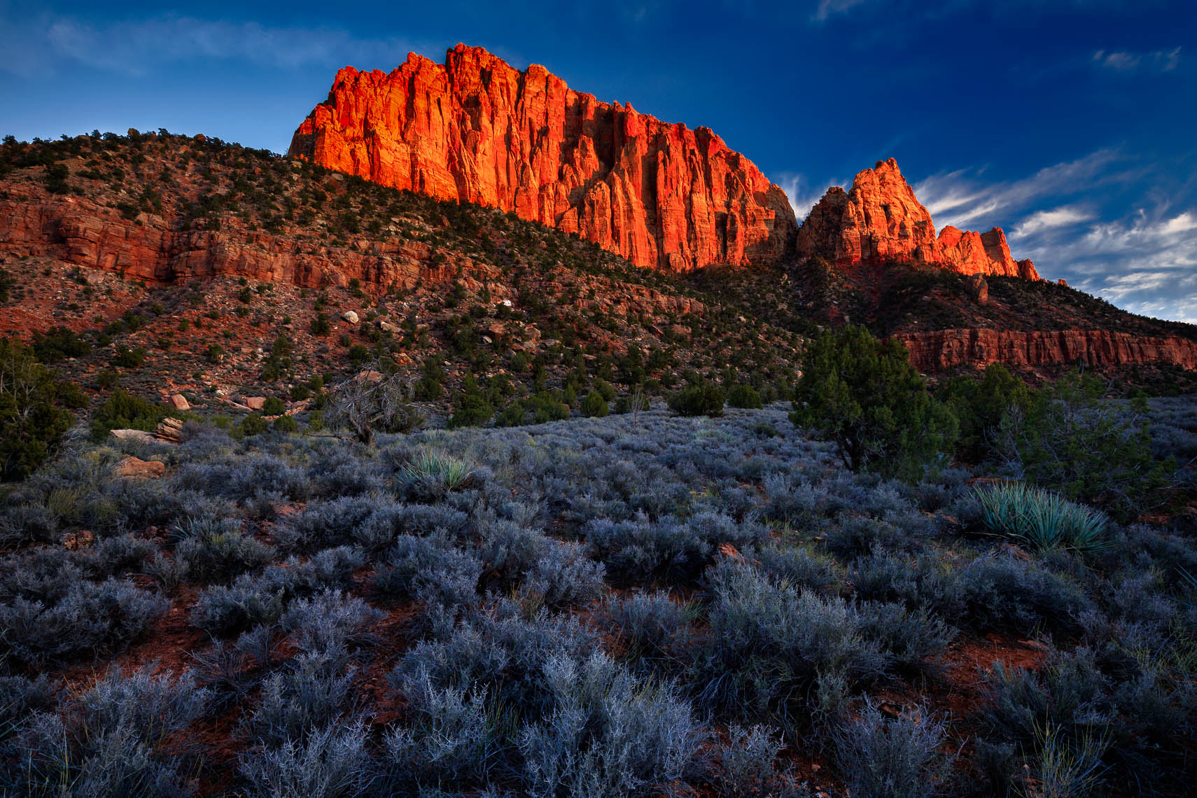 The Watchman at Sunset