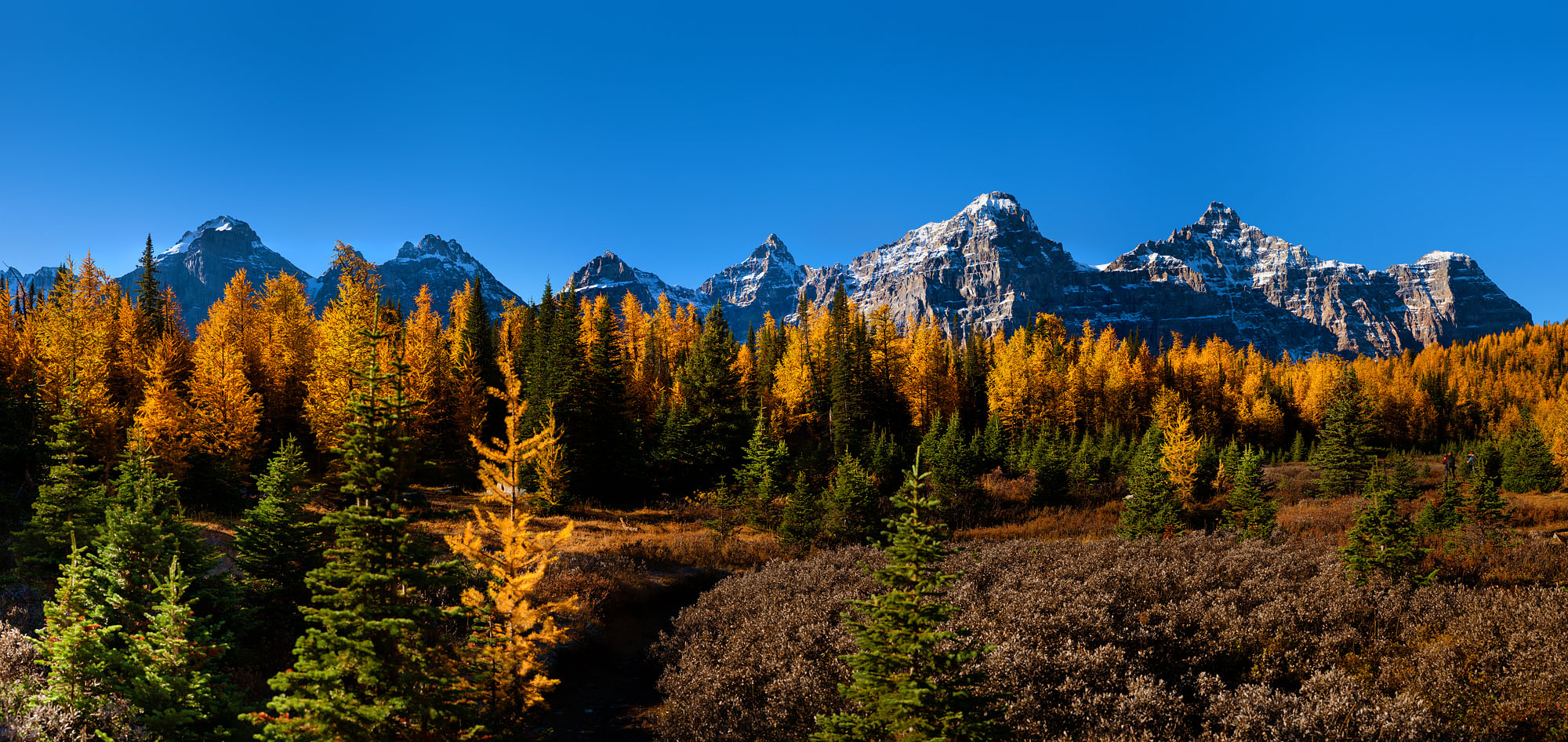 Mark_Unrau-Larch_Valley